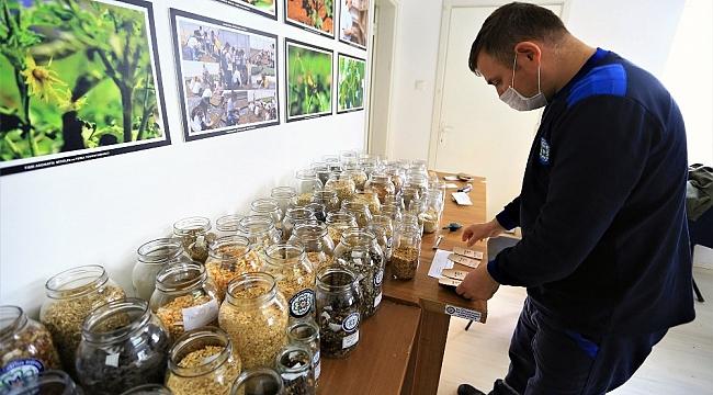 Muğla'nın tohumları Türkiye'nin topraklarıyla buluşuyor