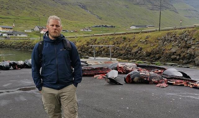 Hayvan hakları savunucusu, Faroe Adaları'ndaki tepki çeken yunus ve balina katliamını anlattı
